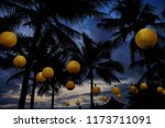 tropical night landscape at... | Shutterstock . vector #1173711091