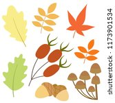 collection of autumn elements.... | Shutterstock .eps vector #1173901534