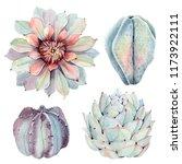 watercolor vintage succulents... | Shutterstock . vector #1173922111