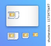 blank realistic sim card. set... | Shutterstock .eps vector #1173975697