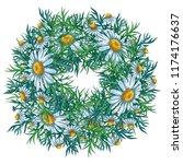 watercolor floral composition... | Shutterstock . vector #1174176637