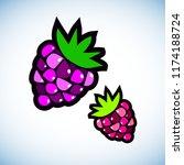 berry  raspberry  vector  fruit ... | Shutterstock .eps vector #1174188724