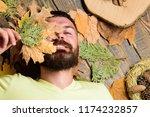 man with beard and mustache... | Shutterstock . vector #1174232857