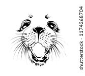 extra happy  ringed seal face.... | Shutterstock .eps vector #1174268704
