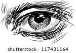 human eye | Shutterstock .eps vector #117431164