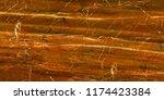 luxury beautiful beige marble... | Shutterstock . vector #1174423384