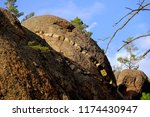 nature of russian buryatia.... | Shutterstock . vector #1174430947