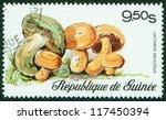 Guinee   Circa 20th Century  A...