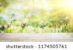 forest blur bokeh background... | Shutterstock . vector #1174505761