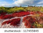 Floreana Island  Galapagos...