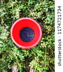 blackberries in the red plastic ... | Shutterstock . vector #1174721734