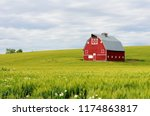 Red Barn In The Wheat Fields O...
