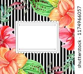 frames for congratulation with ...   Shutterstock . vector #1174966057