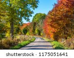country road through a... | Shutterstock . vector #1175051641
