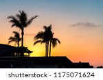 silhouette of palm trees on... | Shutterstock . vector #1175071624