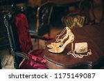 luxury fashion woman... | Shutterstock . vector #1175149087