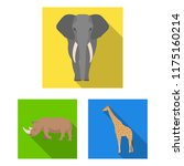 different animals flat icons in ... | Shutterstock .eps vector #1175160214