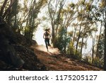 rear view of woman trail... | Shutterstock . vector #1175205127