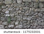 close up exterior view of a... | Shutterstock . vector #1175232031