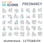 set of vector line icons of... | Shutterstock .eps vector #1175268154