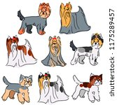 set of 6 illustrations of dogs. ... | Shutterstock .eps vector #1175289457