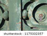 close up outdoor view of a... | Shutterstock . vector #1175332357