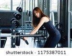 asian girls  long hair  are... | Shutterstock . vector #1175387011
