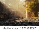 paved narrow street  morning... | Shutterstock . vector #1175551297