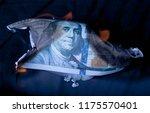 Burning Dollar Bill As A Symbo...