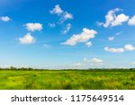 beautiful green meadows and... | Shutterstock . vector #1175649514