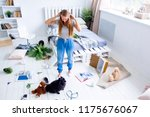 dogs in the middle of mess they ... | Shutterstock . vector #1175676067