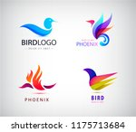vector set of birds logos ... | Shutterstock .eps vector #1175713684