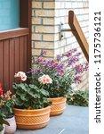 main entrance door to a brick...   Shutterstock . vector #1175736121