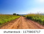 Dirt Road And Landscape...