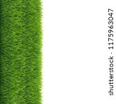 grass white background  vector... | Shutterstock .eps vector #1175963047