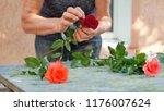 florist woman making bouquet of ... | Shutterstock . vector #1176007624