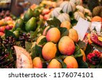 different kind of fruits in... | Shutterstock . vector #1176074101