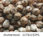 coconut pile tropical fruit at... | Shutterstock . vector #1176115291