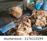 coconut pile tropical fruit at... | Shutterstock . vector #1176115294