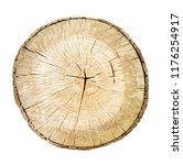 tree cut trunk isolated on... | Shutterstock . vector #1176254917