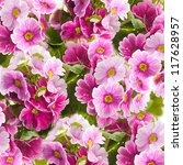 Stock photo a spring primrose is in a bouquet floral background 117628957