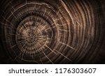 stump of tree felled   section... | Shutterstock . vector #1176303607