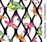 sky bird colorful colibri in a... | Shutterstock . vector #1176346501