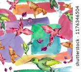 sky bird colorful colibri in a... | Shutterstock . vector #1176346504