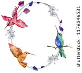 sky bird colorful colibri in a... | Shutterstock . vector #1176346531