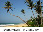 tropical sandy beach with palm... | Shutterstock . vector #1176369424