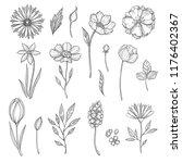 hand drawn flowers. vector... | Shutterstock .eps vector #1176402367