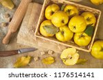a lot of apple quince  with... | Shutterstock . vector #1176514141