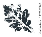 vector oak leaf print.... | Shutterstock .eps vector #1176557167