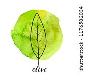 vector leaf of olive tree at...   Shutterstock .eps vector #1176582034